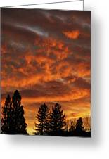 Orange Colored Sky Greeting Card
