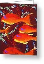 Orange Coral Reef Fish Greeting Card