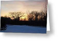 Orange Dawn Sky Behind Trees Greeting Card