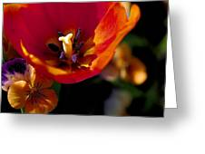 Orange Delight Greeting Card by Don  Wright