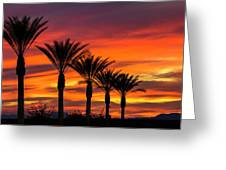 Orange Dream Palm Sunset  Greeting Card