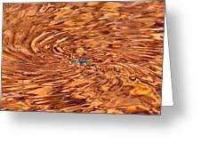 Orange Eddy Greeting Card