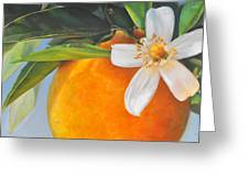 Orange En Fleurs Greeting Card