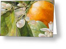 Orange Fleurie Greeting Card