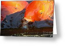 Orange Kiss Greeting Card