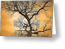 Orange Leopard Greeting Card