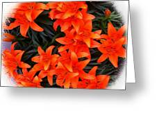 Orange Lilies Vignette Greeting Card