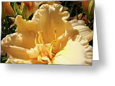 Orange Lily Flower Floral Art Prints Baslee Troutman Greeting Card