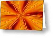 Orange Marmalade Greeting Card