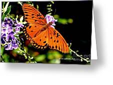Orange Marvel Greeting Card
