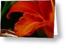 Orange Opening Greeting Card