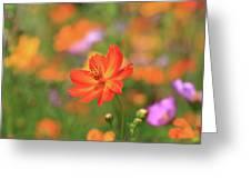Orange Painted Landscape Greeting Card