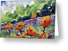 Orange Poppies Greeting Card