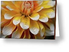 Orange Rain Greeting Card