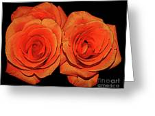Orange Roses With Hot Wax Effects Greeting Card