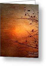 Orange Simplicity Greeting Card