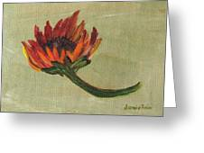 Orange Sunflower Greeting Card