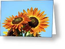 Orange Sunflowers Summer Blue Sky Art Prints Baslee Greeting Card