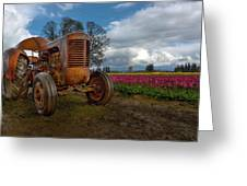 Orange Tractor At Tulip Field Greeting Card