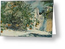 Orange Trees And Gate Greeting Card