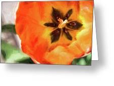 Orange Tulip Bloom Greeting Card