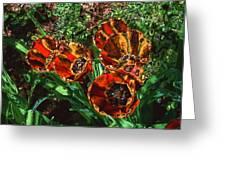 Orange Tulip Chrome Greeting Card
