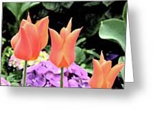 Orange Tulip Painting  Greeting Card