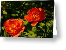 Orange Tulips In My Garden Greeting Card
