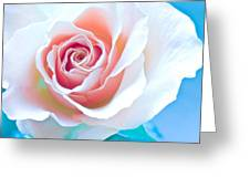 Orange White Blue Abstract Rose Greeting Card by Artecco Fine Art Photography