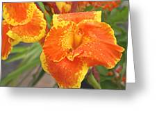 Orange Ya Glad Greeting Card