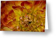 Orange-yellow Greeting Card