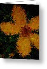 Orange-yellow Flower Greeting Card