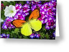 Orange Yellow Wings Greeting Card