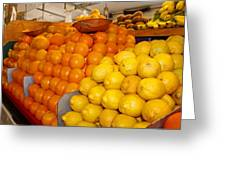 Oranges And Lemons Greeting Card