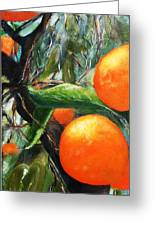 Oranges Extract Greeting Card