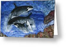 Orcas Family Frolicks Greeting Card