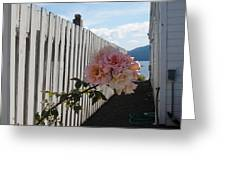 Orcas Island Rose Greeting Card