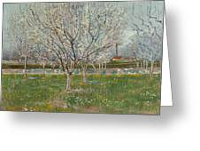 Orchard In Blossom, Plum Trees Greeting Card
