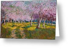 Orchard Light Greeting Card