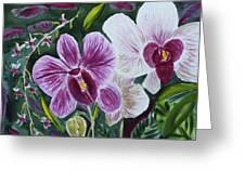 Orchid At Aos 2010 Greeting Card