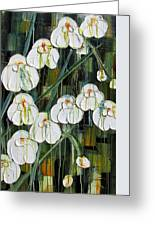 Orchid Dance Greeting Card