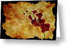 Orchid Interplay Greeting Card