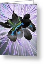 Orchid Inverted Greeting Card
