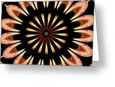 Orchid Kaleidoscope 3 Greeting Card