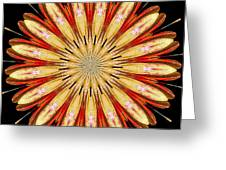 Orchid Kaleidoscope 5 Greeting Card