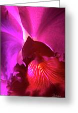 Orchid Landscape Greeting Card