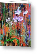 Orchid O Greeting Card
