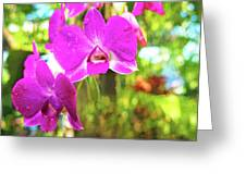 Orchid Oil Painting Greeting Card