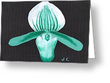 Orchid-paphiopedilum Bob Nagel Greeting Card by M Valeriano
