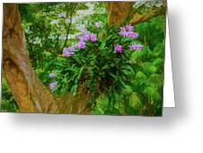 Orchid Tree Greeting Card
